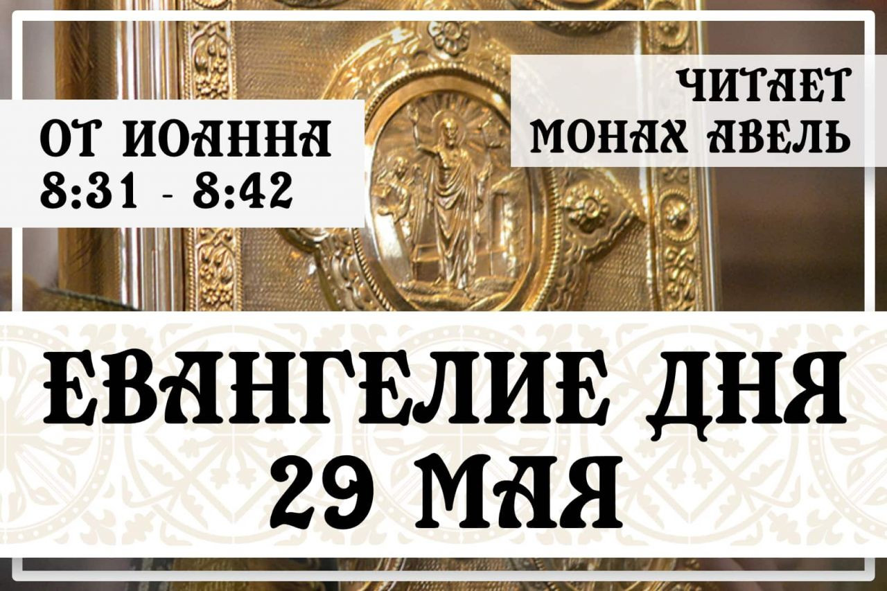 Евангелие дня / 29 мая 2021 / Ин.8:31 - 8:42